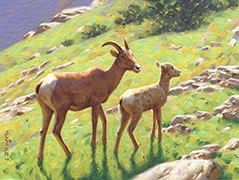 Bighorn Ewe and Lamb painting