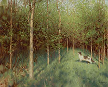 Birder painting, domestic cat, spring forest