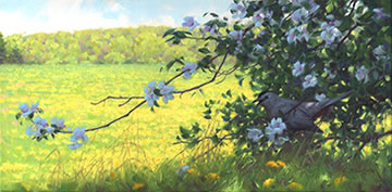 Catbird painting, catbird in apple tree, spring blossoms