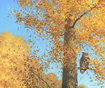 Great Horned Owl, Oil painting, in Aspen tree in autumn woods