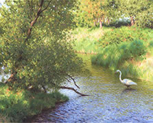 Southern Visitor, oil painting of egret, heron, white bird on river