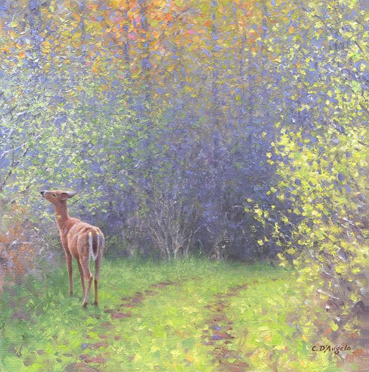 Claudio D Angelo Gallery Of Wildlife Art Paintings