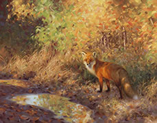 Sun-Dappled Fox, painting